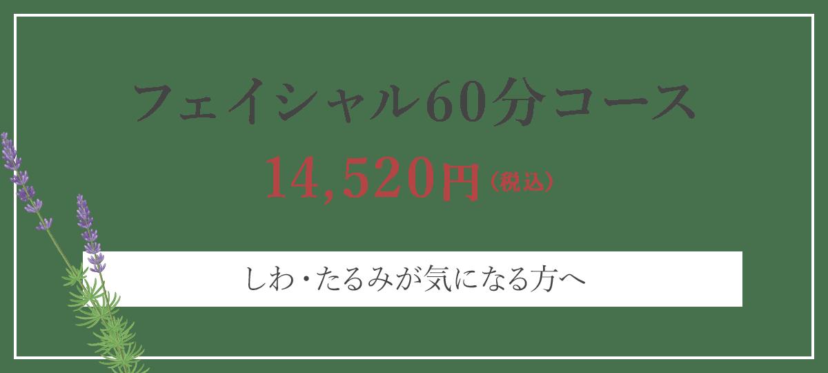 フェイシャル60分コース